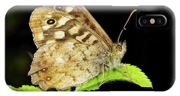 Speckled Wood Butterfly Phone Case by John Devries/science Photo Library