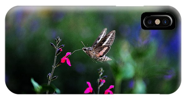 Sphinx Moth And Summer Flowers IPhone Case