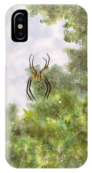 Spider In Web #2 IPhone Case