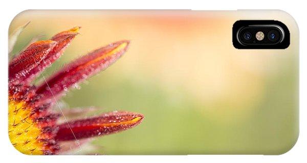 Spider's Stitch On Blanket Flower IPhone Case