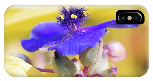 Spiderwort (tradescantia Andersoniana) Phone Case by Sam K Tran/science Photo Library