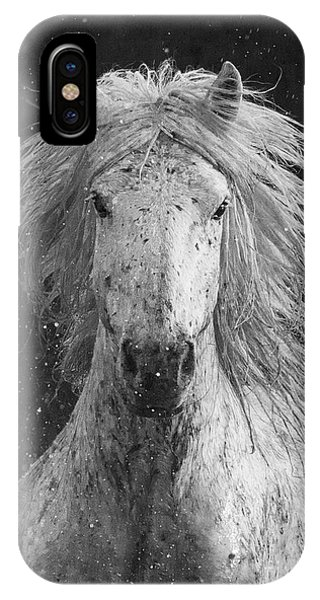 White Horse iPhone Case - Splash by Carol Walker