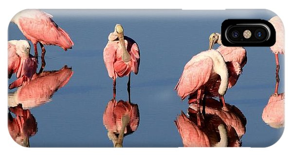 Spoonbill Reflections IPhone Case