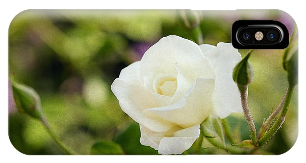 Spotlights On The White Rose IPhone Case