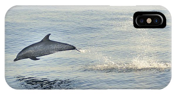 Spotted Dolphin Leaping IPhone Case