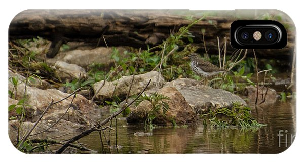 Lake Juliette iPhone Case - Spotted Sandpiper by Donna Brown