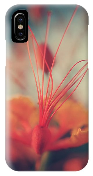 Stamen iPhone Case - Spread The Love by Laurie Search