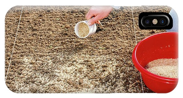 Spreading Grass Seeds Phone Case by Science Photo Library