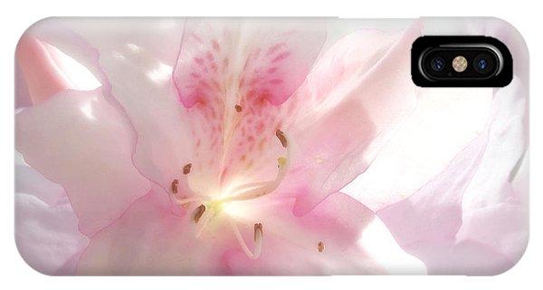 Spring Azalea Glow IPhone Case