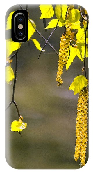 Spring Birch Buds Paint IPhone Case