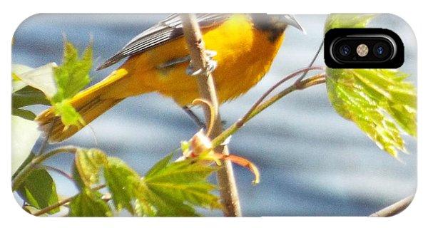 Spring Bird  Phone Case by Lisa Roy