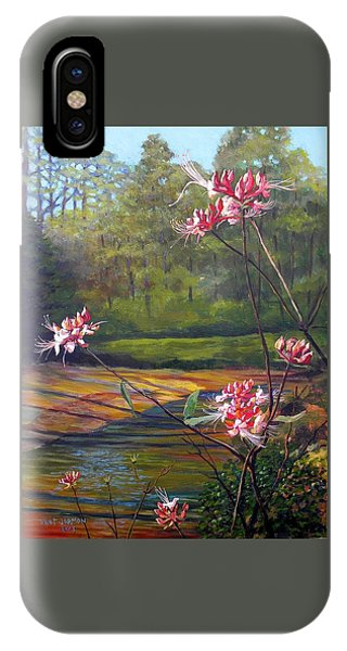 Spring Blooms On The Natchez Trace IPhone Case