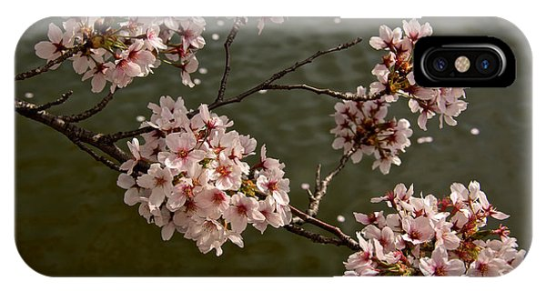 Spring Blossoms Phone Case by Kathi Isserman