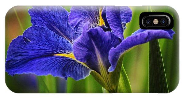Spring Blue Iris IPhone Case