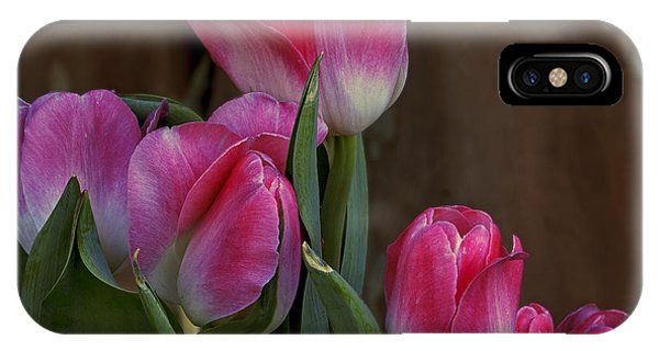 Spring Color IPhone Case