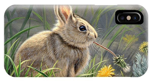 Rabbit iPhone Case - Spring Cottontail by Paul Krapf