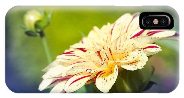 Spring Dream Jewel Tones IPhone Case