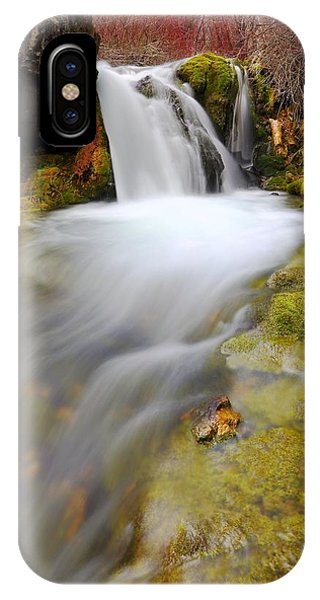 Spring Falls IPhone Case