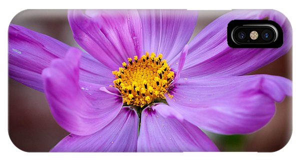 Cosmo Spring Flower Square IPhone Case