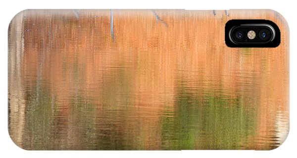 Spring Geese Square IPhone Case