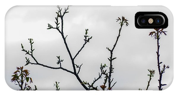 Spring Growth IPhone Case