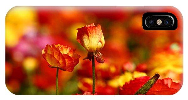 Carlsbad Spring IPhone Case