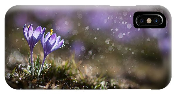 IPhone Case featuring the photograph Spring Impression I by Jaroslaw Blaminsky