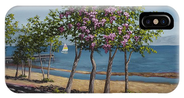 Spring In Kings Beach Lake Tahoe IPhone Case