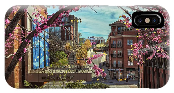 Spring In The Scenic City IPhone Case