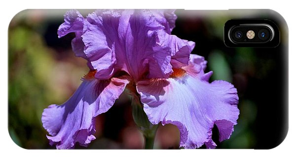 Spring Iris Bloom IPhone Case