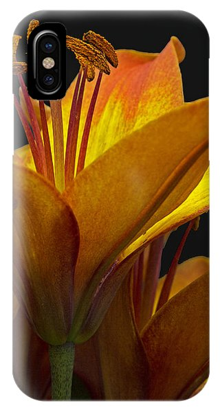 Spring Lily IPhone Case