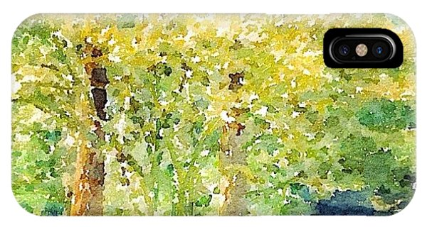 Sunny iPhone Case - Spring Maples by Anna Porter