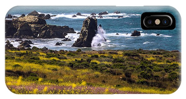 Spring On The California Coast By Denise Dube IPhone Case