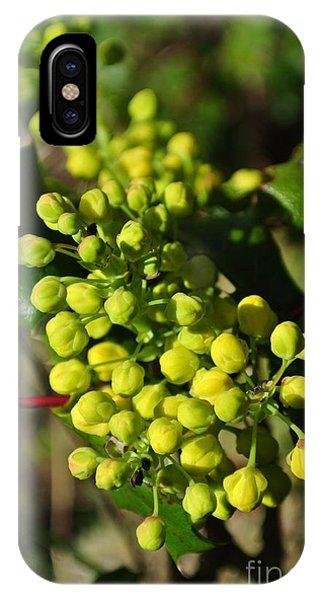 Spring Oregon Grape IPhone Case