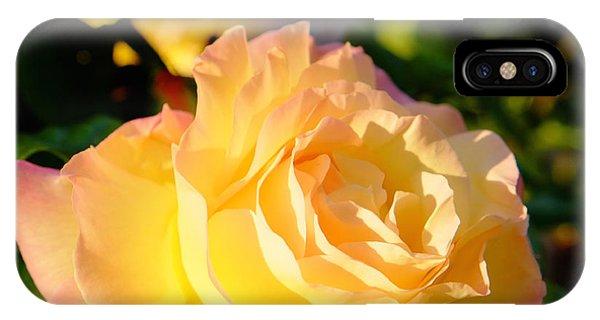 Spring Rose IPhone Case