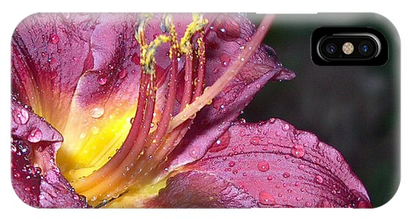 Spring Showers IPhone Case