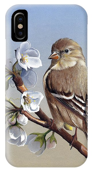 Spring Splendor IPhone Case