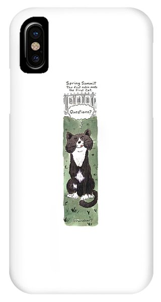 Spring Summit IPhone Case