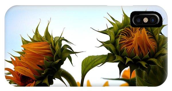 Spring Sun Shine IPhone Case