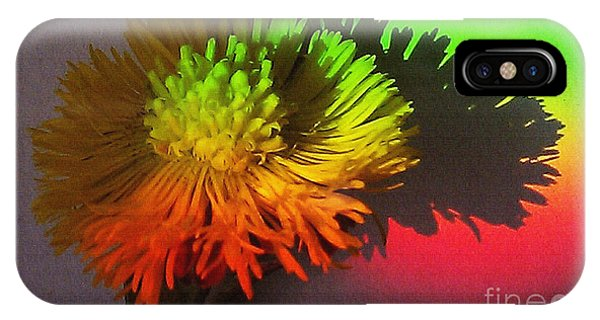 Spring Through A Rainbow IPhone Case