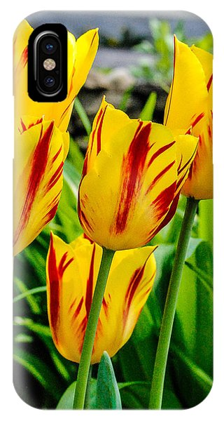 iPhone Case - Spring Time by George Fredericks