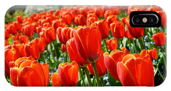 Spring Time Tulips 3 Phone Case by Terry Elniski