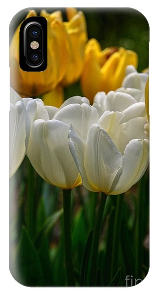 Spring Tulips IPhone Case