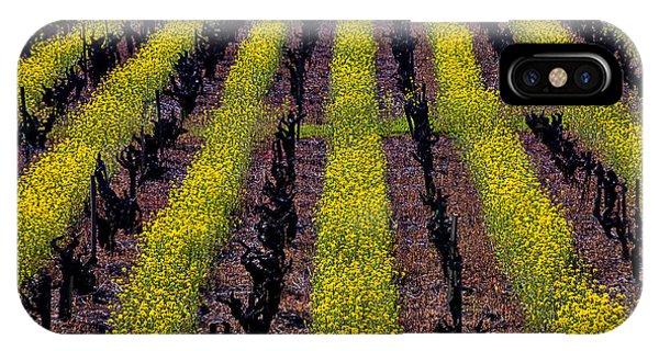 Mustard iPhone Case - Spring Vinyards by Garry Gay