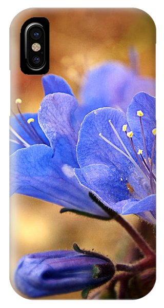 Spring Wildflowers - The Desert Bluebells IPhone Case