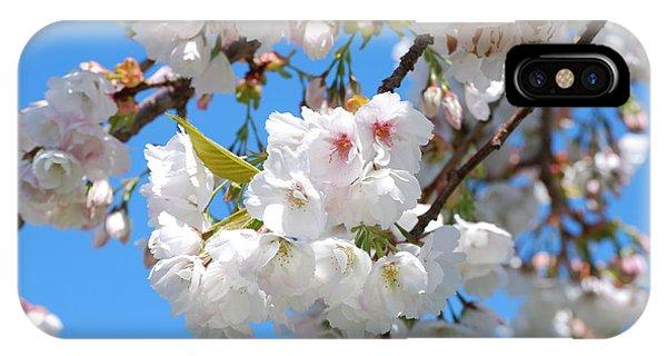 Springtime Blossoms IPhone Case