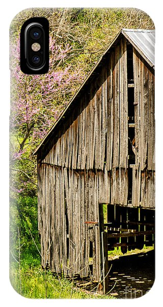 Springtime In Kentucky IPhone Case