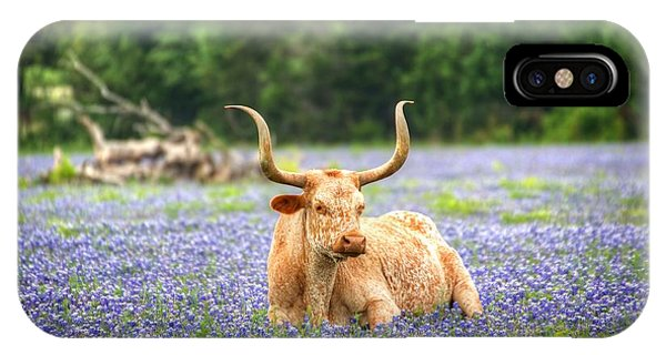 Springtime In Texas IPhone Case