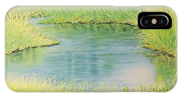 Springtime Marsh-new Beginnings IPhone Case