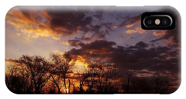 Springtime Serenade IPhone Case